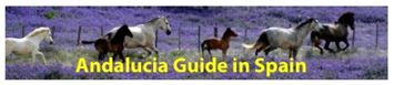 Andalucia Guide link